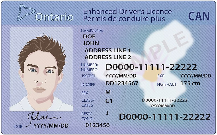 ontario-driving-license.png